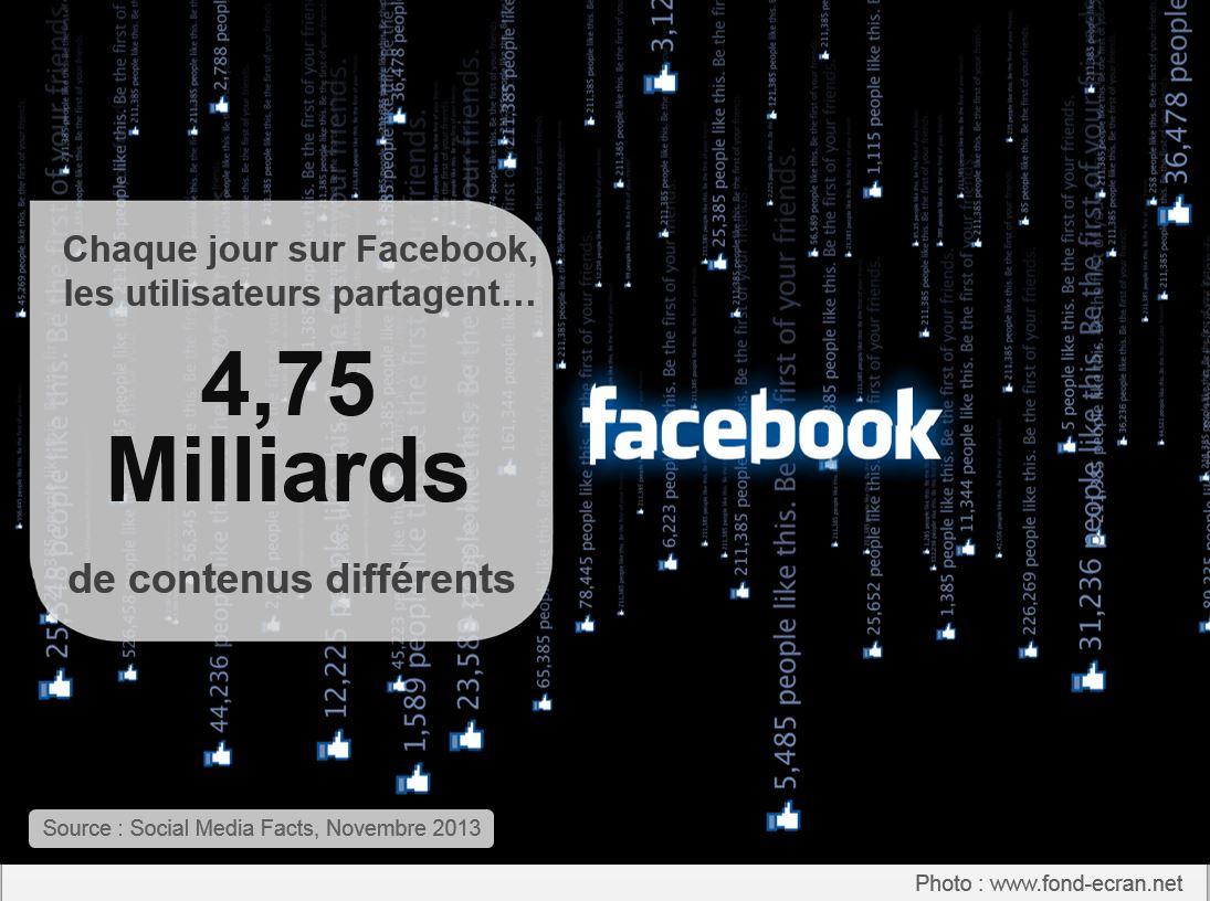 Chiffres_reseaux_sociaux_2013_img(3)