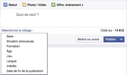 ciblage_statut_facebook_img1_-_webchronique