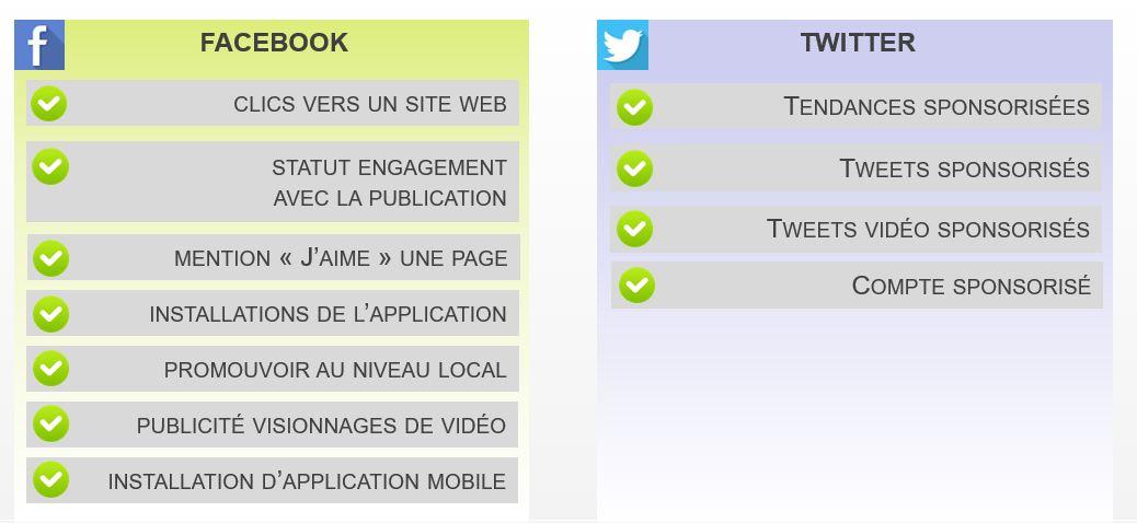 format publicitaire facebook twitter - img n°(1) - webchronique