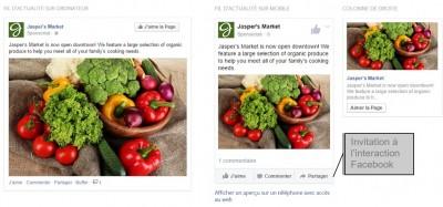 format publicitaire facebook twitter - img n°(4) - webchronique