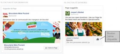 format publicitaire facebook twitter - img n°(5) - webchronique